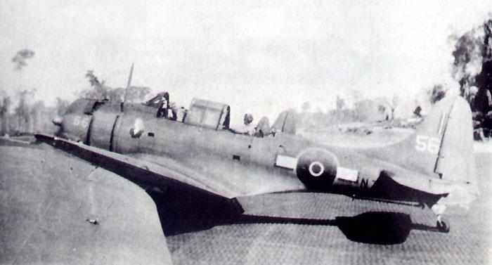 nz5056p1