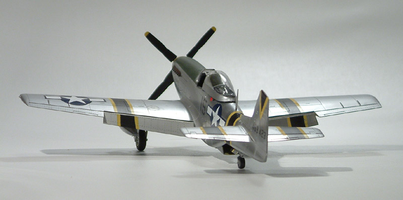 p-51_squirt_beckwith11
