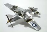 p-51_squirt_beckwith27