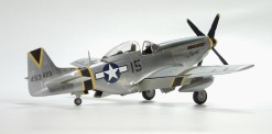 p-51_squirt_beckwith28