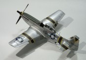 p-51_squirt_beckwith30