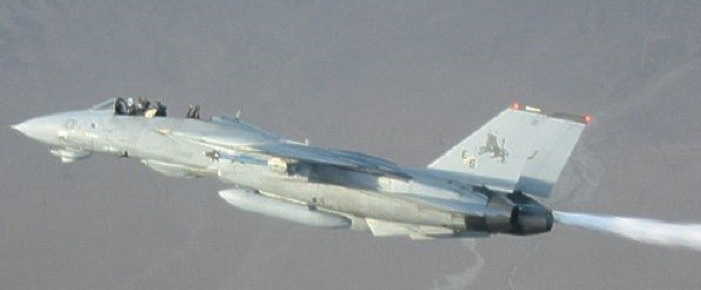 F-14D-without-Canopy-3