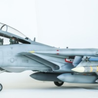 """The """"Convertible"""" F-14D of USN's VF-213 """"The Black Lions"""""""